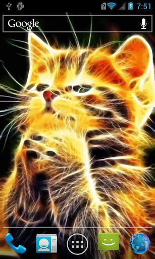 玩免費個人化APP|下載Sparkling kitten LWP app不用錢|硬是要APP