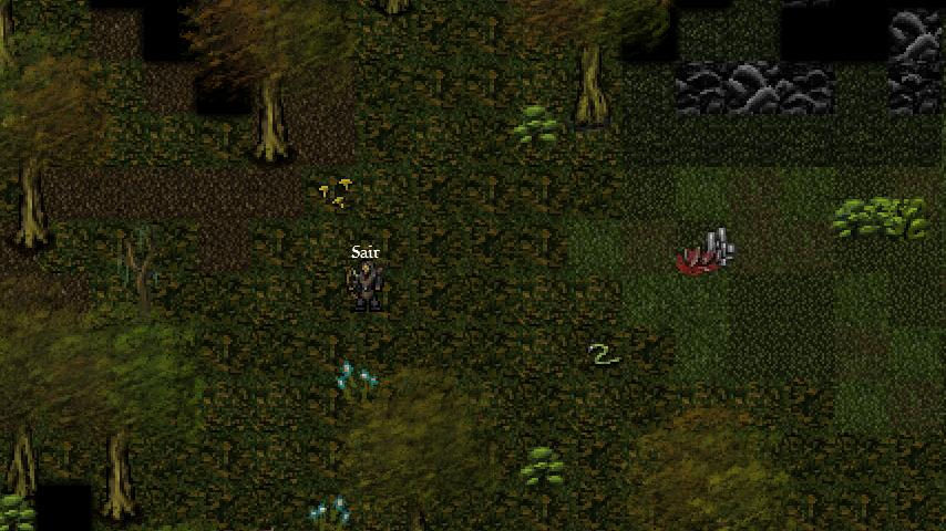 9th Dawn RPG- screenshot
