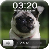 Dog Screen Lock
