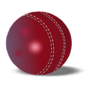 Action Packed Cricket DVDs icon