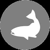 VT Fish Diaries