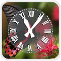 Butterfly Clock Live wallpaper icon