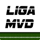 Liga MVD