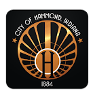 Hammond 311 icon