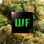 Weed Facts 7.0.0 Apk