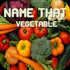 Name That Vegetable icon