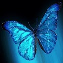 Azure Butterfly With Shimmer logo