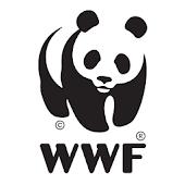 WWF Poradnik