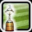 Libertadores 2013 icon