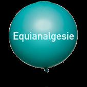 Equianalgesie
