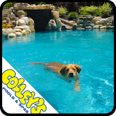 Colley's Pools & Spas