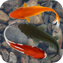 Beautiful Fish ScreensaverFree icon