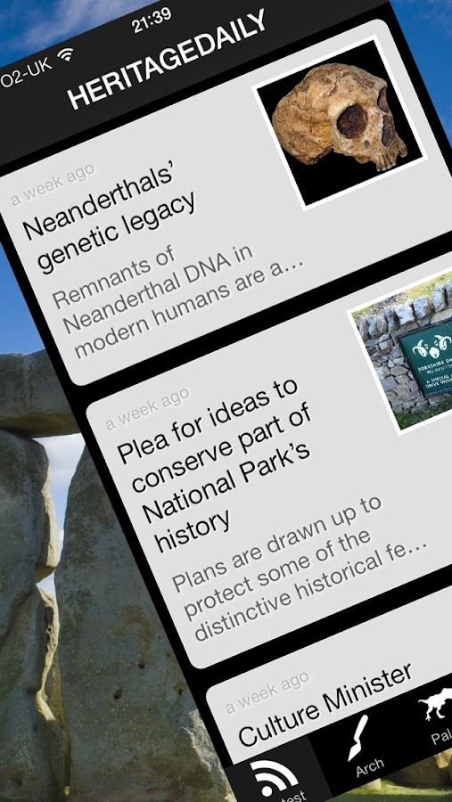 HeritageDaily News - screenshot