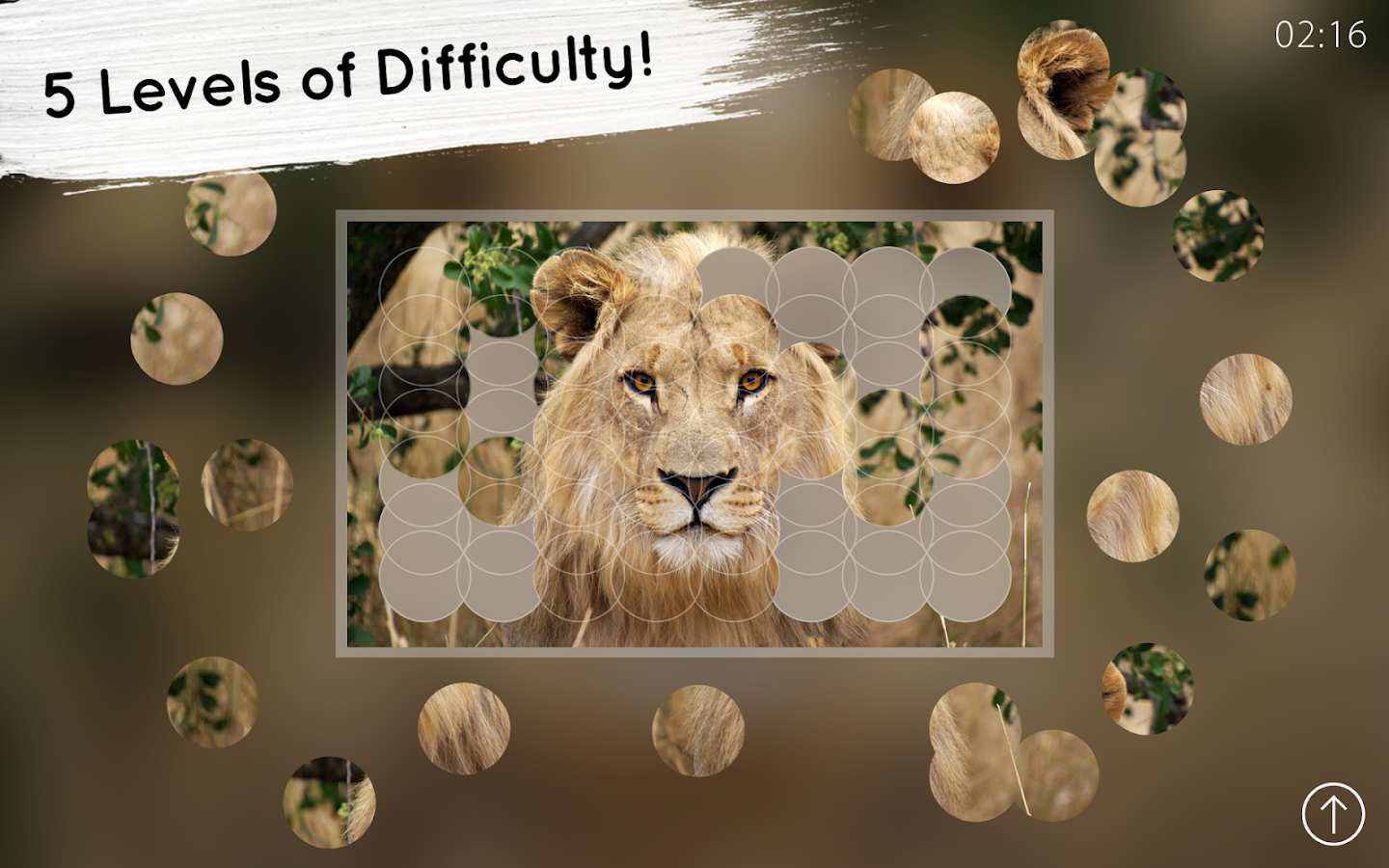 Venn Lions: Circle Jigsaw- screenshot