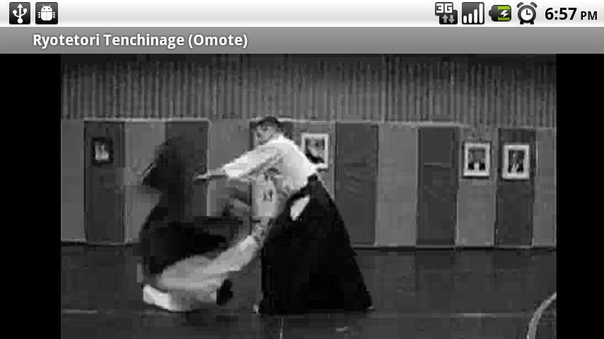 Aikido Fifth Kyu (Free)- screenshot