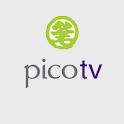Pico Conference