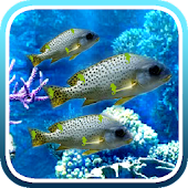 Hidden Object - Under the Sea