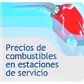 CNE Bencina en línea