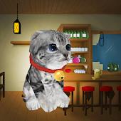 3D Cat simulator