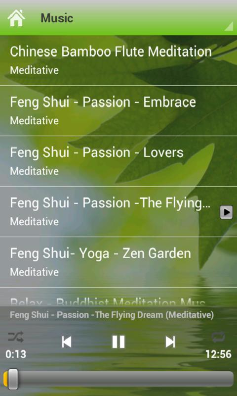 Yoga & Relaxation Music - screenshot