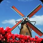 Tulip Windmill Live Wallpaper icon