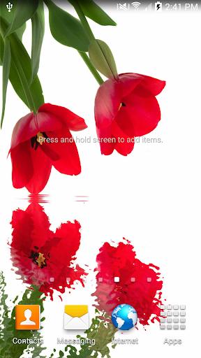 Tulips In Water II