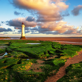 New Brighton Lighthouse by Ryan Bedingfield - Landscapes Beaches ( perch rock )
