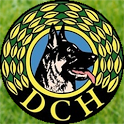 DcHApp icon