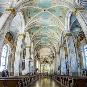 Cathedral by Nerijus Savičius - Buildings & Architecture Architectural Detail ( interior, vectorama, church, inside, cathedral )