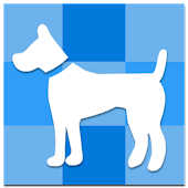Dog Guinness -(Pets knowledge)