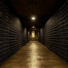 by Mihai  Costea - Buildings & Architecture Public & Historical ( cellar, champagne )