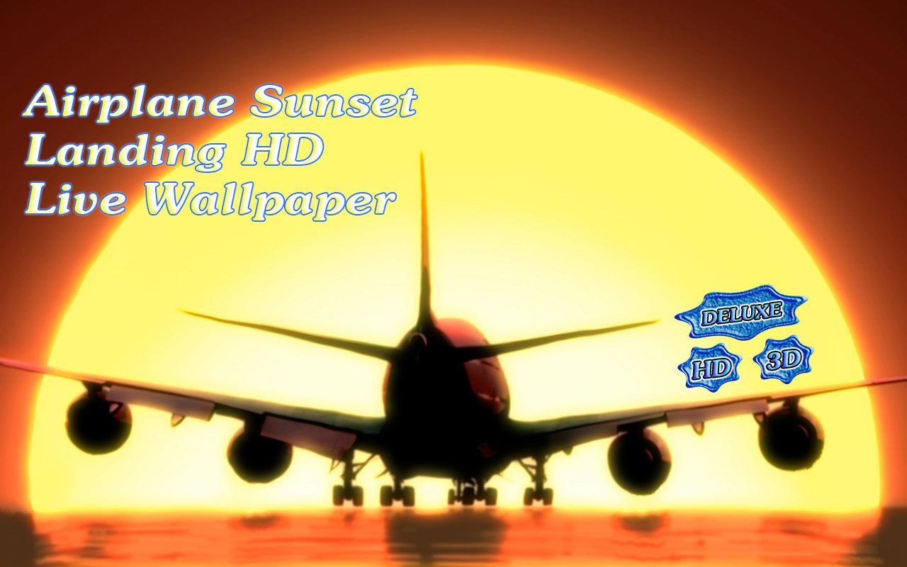 Airplane Sunset Landing- screenshot