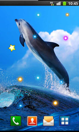 Dolphin Gallery 2014 LWP