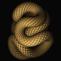 Slithering Snake Live Wallpape logo