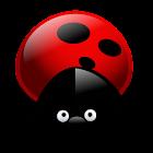 虫飞 icon