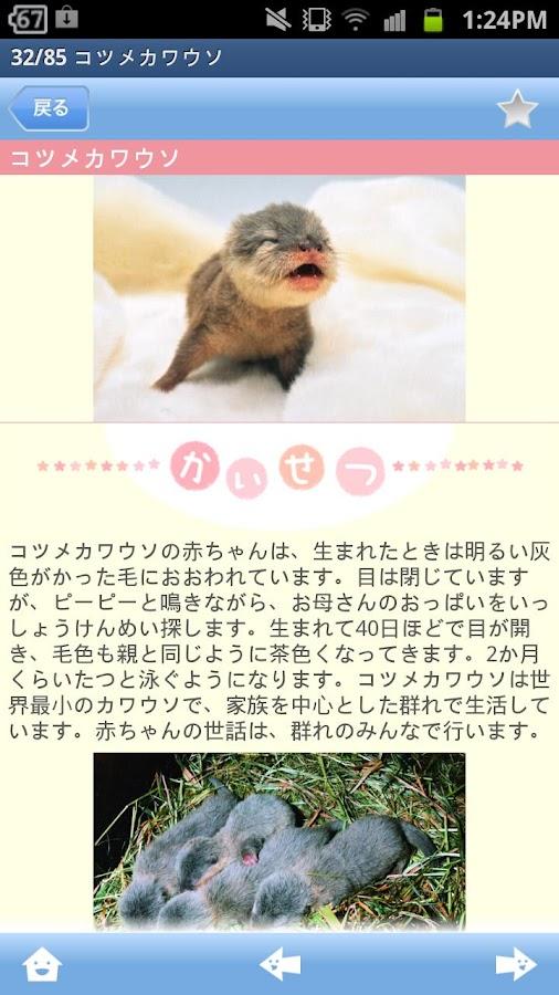 赤ちゃん動物図鑑100- screenshot