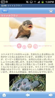 赤ちゃん動物図鑑100のおすすめ画像4