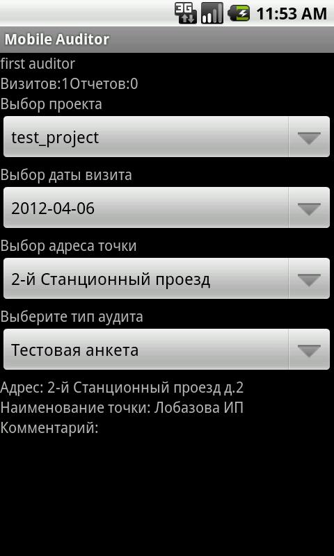Mobile Auditor - screenshot