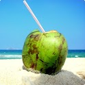 Brazilian Holidays Cal. 2013 logo