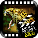 Suramericano de los animales icon