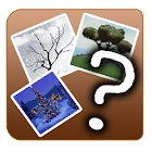 GuessWord (4 pics 1 word) icon