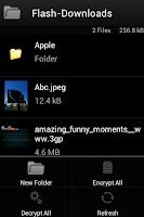 Screenshot of VideoFlash Browser