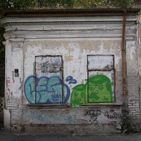 Little blind house by Cristina Andrei - Buildings & Architecture Decaying & Abandoned ( grafitti, old house, little house, walled windows )