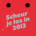 Coachingskalender 2013 logo