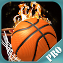 Basketball Madness Pro icon