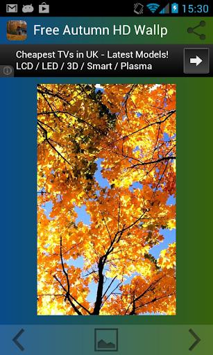 秋天的高清壁紙免費