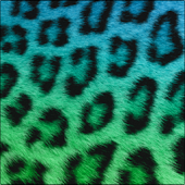 Cute Cheetah Keyboard Skin