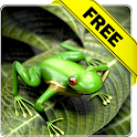 Froggy Free live wallpaper