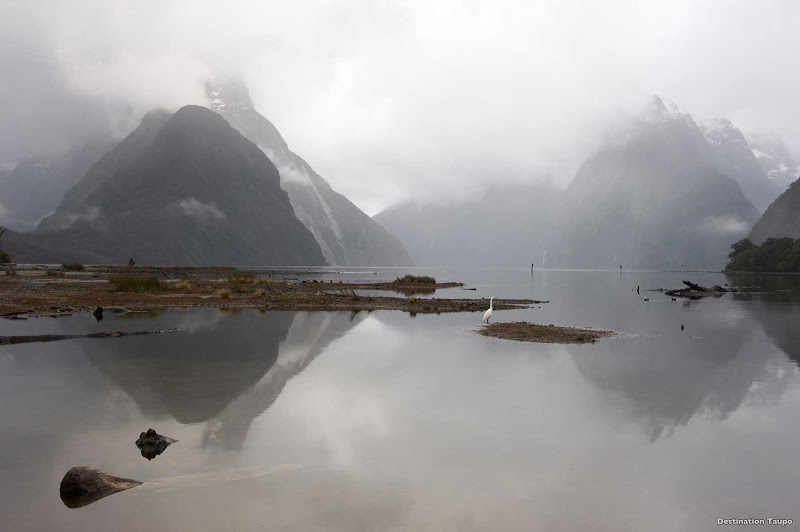On calm days, the deep waters of Milford Sound in New Zealand reflect the landscapes like a perfect mirror.