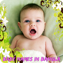 Baby Names Bangla Meaning icon